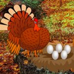 Catch A Turkey And Eggs