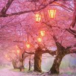 Cherry Blossom Forest Escape