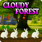 Cloudy Forest Escape