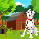 Cute Dalmatian Dog Rescue