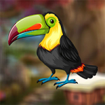 Cute Toucan Bird Escape