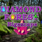 Diamond Forest