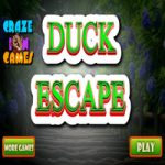 Duck Escape CrazeInGames