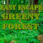 Easy Escape Greeny Forest