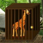 Escape Game Save The Giraffe