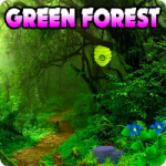 Escape The Green Forest