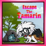 Escape The Tamarin
