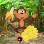 Feed The Hungry Monkey