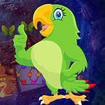 Find Astrologer Parrot