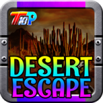 Find The Route Map In Desert