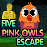 Five Pink Owl Escape