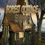 Forest Cottage Escape