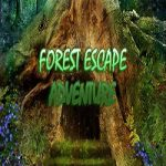 Forest Escape Adventure