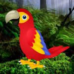 Macaw Green Forest Escape