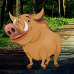 Mangrove Forest Pig Escape