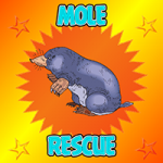 Mole Rescue From House