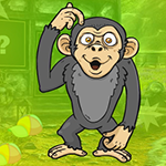 Muddled Monkey Escape