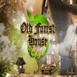 Old Forest House Escape