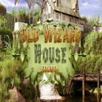 Old Wizard House Escape