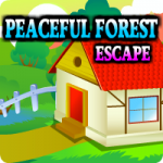 Peaceful Forest Escape