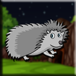 Porcupine Escape From Cage