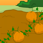 Pumpkin Farm Escape