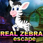 Real Zebra Escape