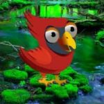 Red Angry Bird Escape
