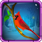 Red Cardinal Rescue