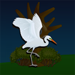 Rescue Egret Bird