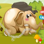 Rescue The Little Elephant