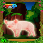 Rescue The Pig 2