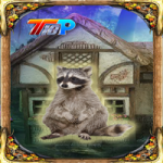 Rescue The Raccoon 2