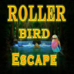 Roller Bird Escape