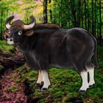 Save The Gaur