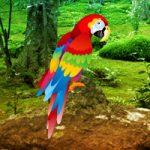 Scarlet Macaw Forest Escape