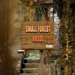 Small Forest House Escape
