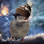 Sparrow In The Winter Puzzle