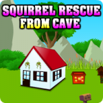 Squirrel Rescue From Cave