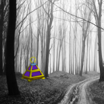 Swarthy Forest Escape