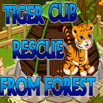 Tiger Cub Rescue From Forest