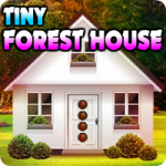 Tiny Forest House Escape