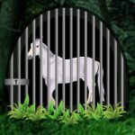 White Horse Trapped Escape